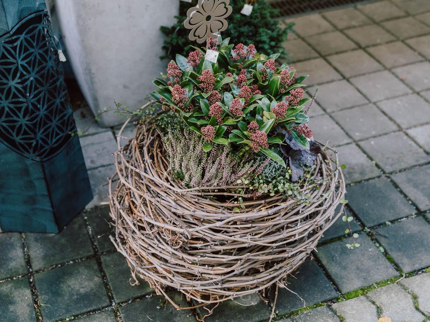 blumen-gaby-strohmeier-graz-saisonales-29