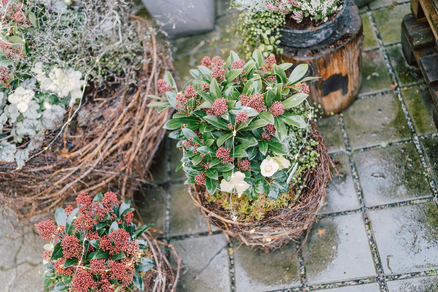 blumen-gaby-strohmeier-graz-saisonales-advent-42